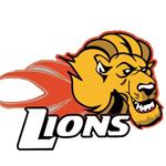 dublin_lions150.png